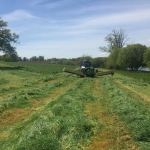 Grass mowing
