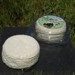 Fresh cheese nature